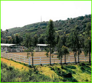 sycamore canyon horse stables back arena.